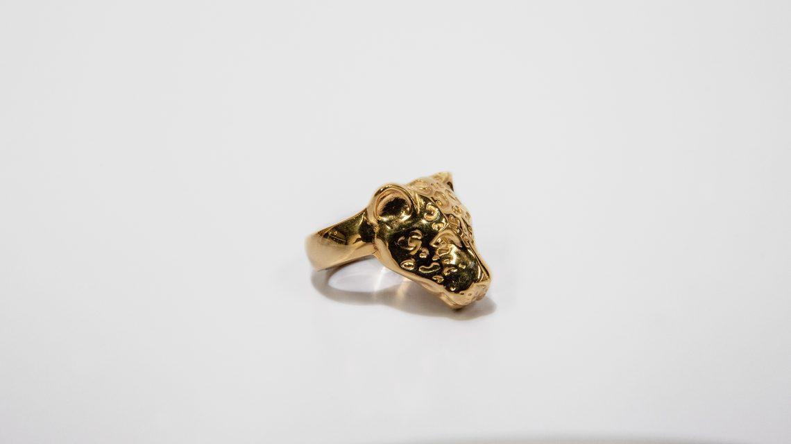Jaguar dorado 4